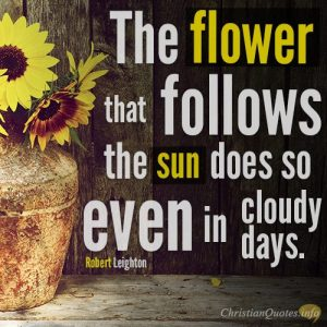 The flower that follows the sun does so even in cloudy days